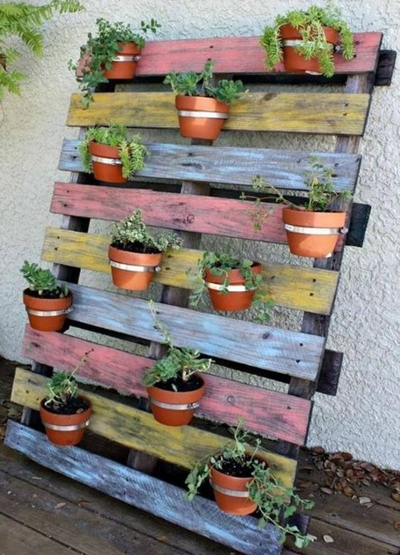 Un mini jardin avec une palette