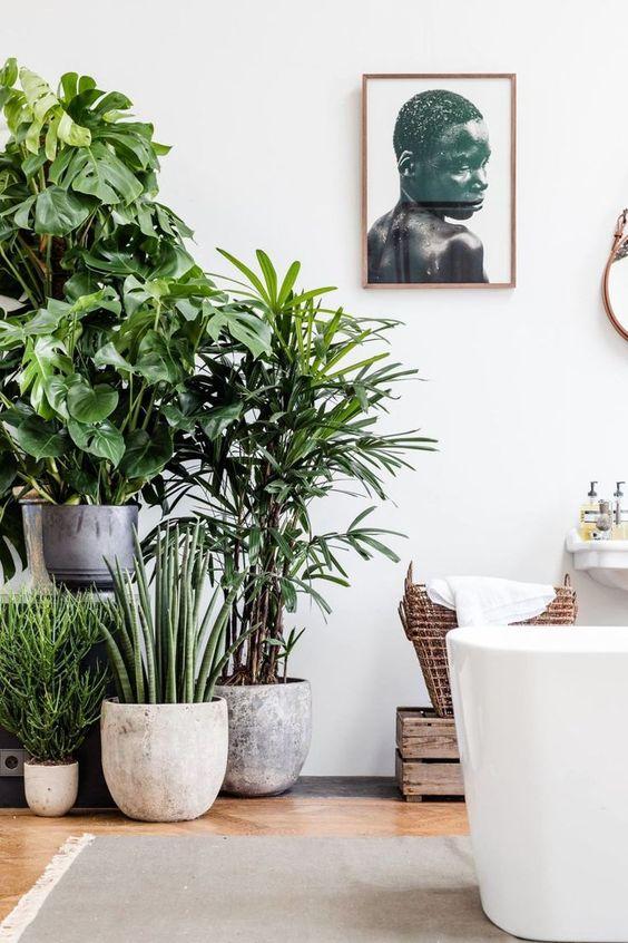 idee decorazione bagno con piante 17