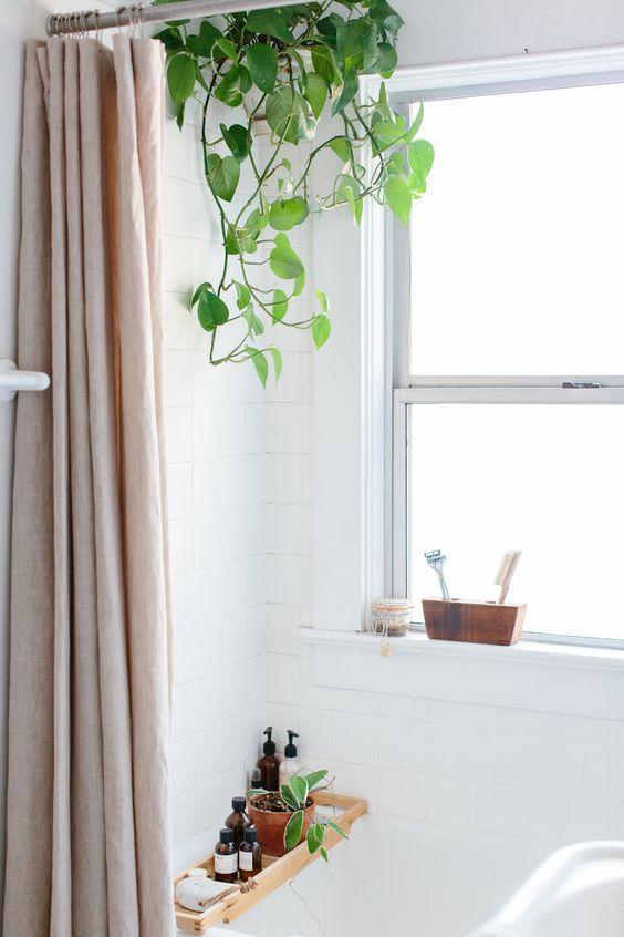 idee decorazione bagno con piante 5