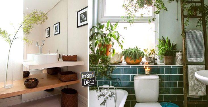 idees-pour-deco-salle-de-bain-avec-des-plantes