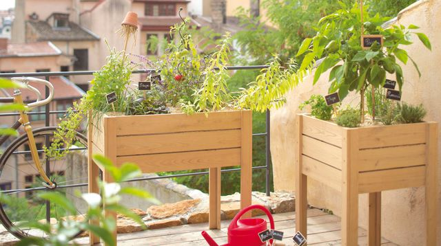 am nager un petit potager sur son balcon 20 id es inspirantes vid o. Black Bedroom Furniture Sets. Home Design Ideas