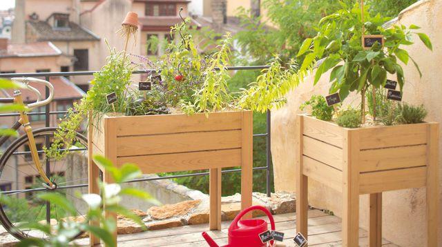 organizzare orto su terrazzo 1