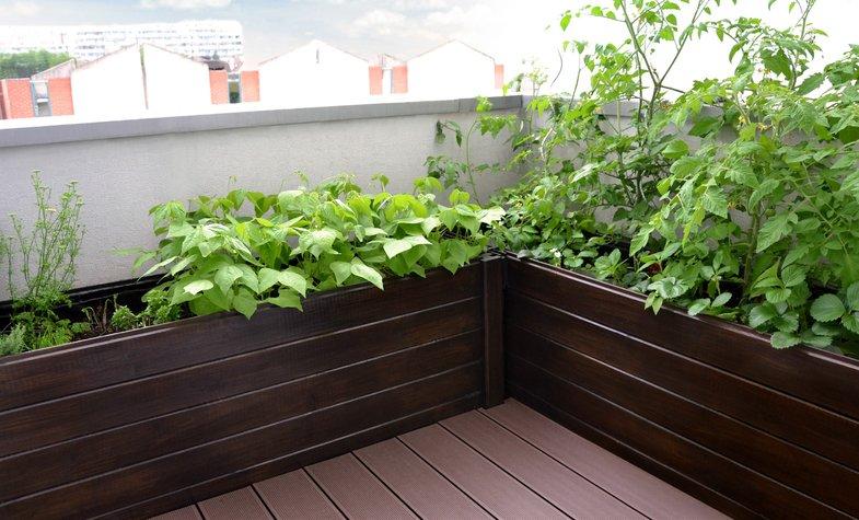am nager un petit potager sur son balcon 20 id es inspirantes vid o. Black Bedroom Furniture Sets. Home Design Ideas