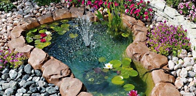 une petite oasis dans le jardin