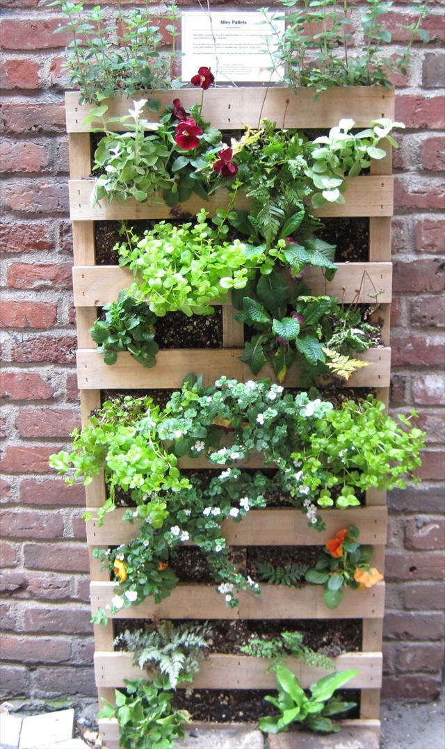 Une palette de fleurs pour d corer son jardin 20 id es for Jardin pour vous