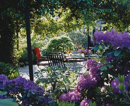 salon-original-dans-le-jardin