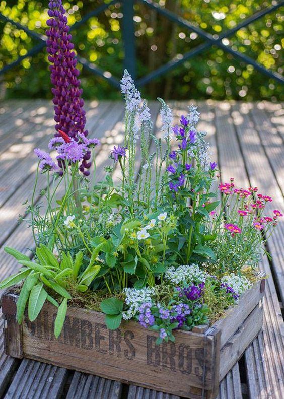 Une petite jardinière