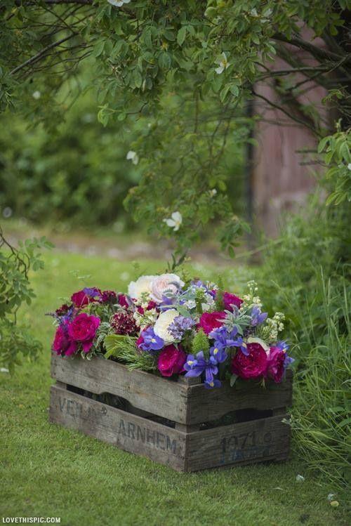 Une petite jardinière dans une cagette en bois! 20 idées  ~ Mini Cagette En Bois