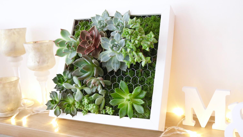tutoriel-cadre-vegetal2