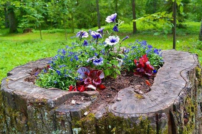 Transformer le tronc d'un arbre abattu en un pot de fleurs