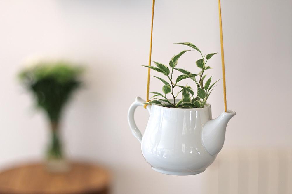 Des plantes suspendues pour d corer votre int rieur 20 for Vase decoration interieur