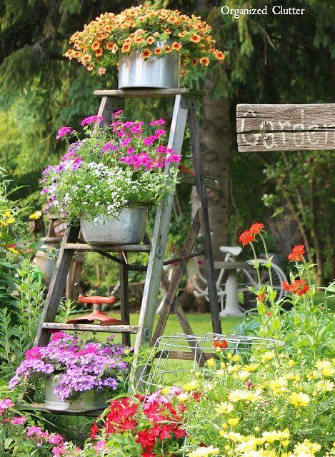 Récupérer une vieille échelle pour décorer son jardin