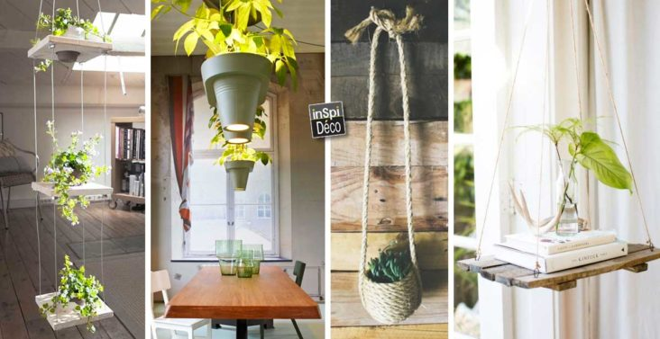 des-plantes-suspendues