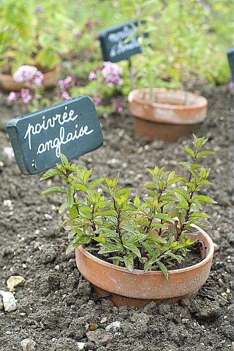Créer un coin herbes aromatiques original dans le jardin! 20 idées...