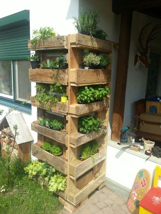 créer un coin herbes aromatiques