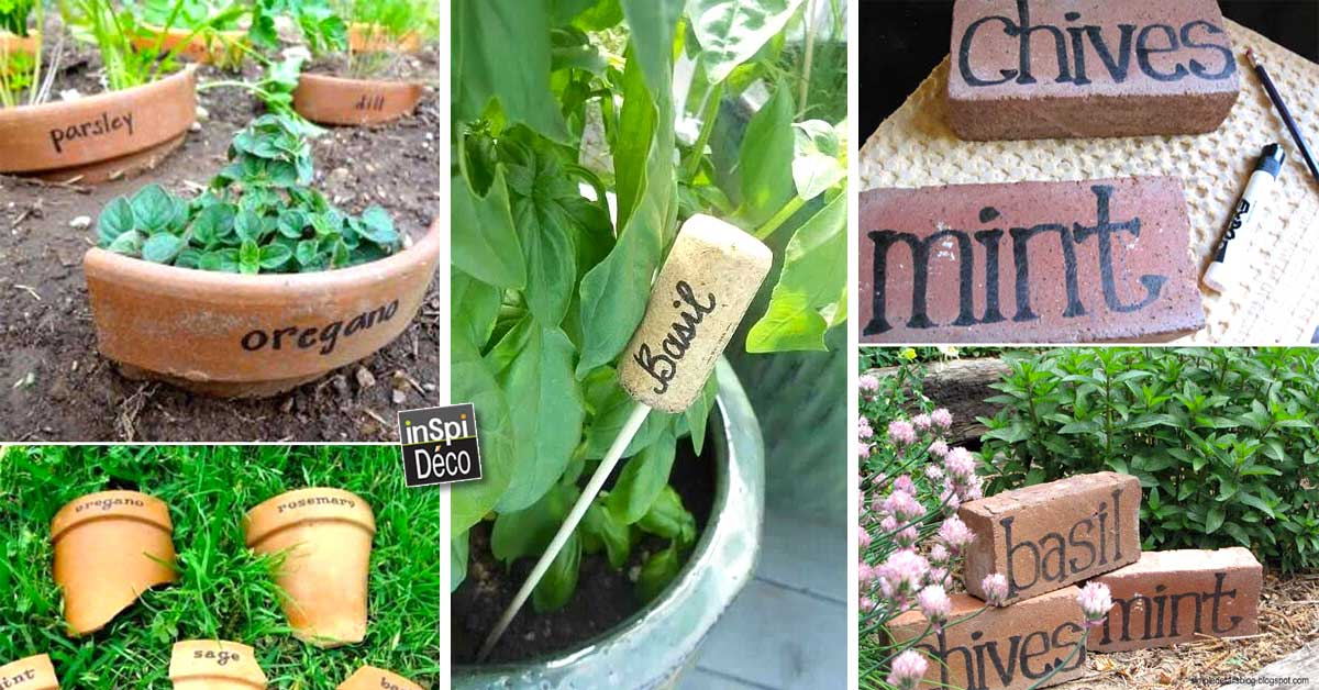 Tiqueter les plantes de votre jardin de fa on originale for Idees plantes jardin