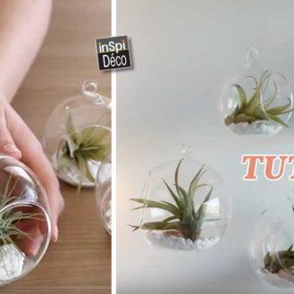Decorer-avec-plantes-suspendues-tutoriel