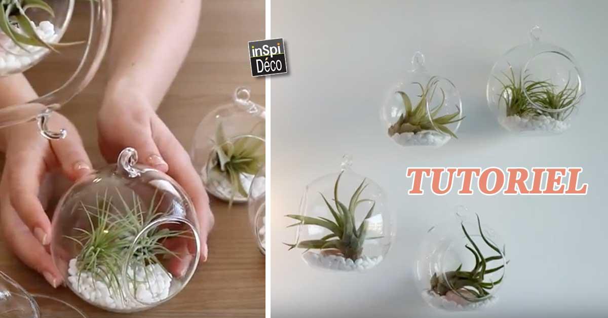 D corer son int rieur avec des plantes suspendues inspiration et tutoriel - Decorer terras avec plantes ...