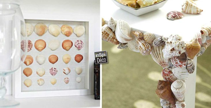 decoration-avec-coquillage-DIY