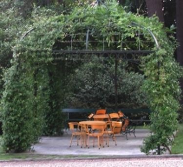 Une Pergola avec des plantes grimpantes