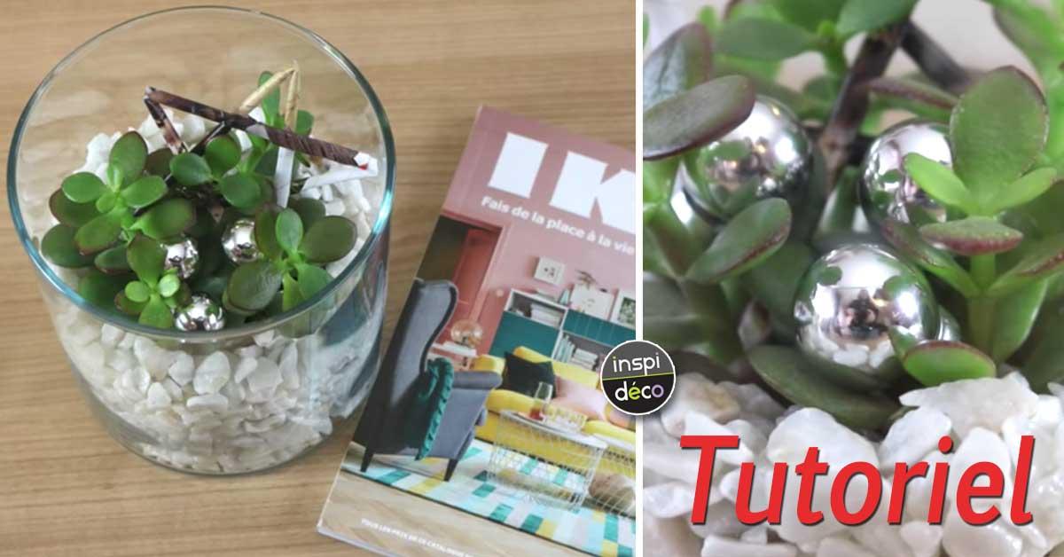 comment cr er une d coration de succulentes tutoriel vid o. Black Bedroom Furniture Sets. Home Design Ideas