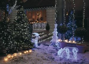 A Christmas in the garden! 15 ideas to inspire you...
