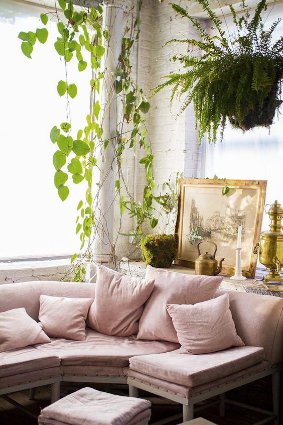 Décorer le séjour avec des plantes