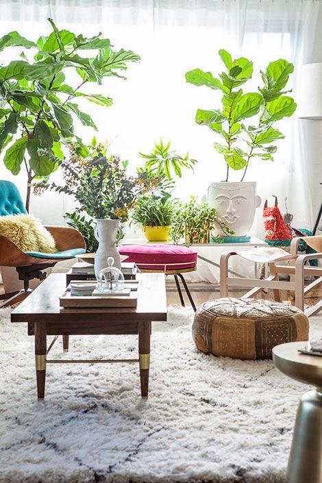 Decorare il soggiorno con le piante