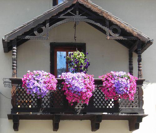 Le balcon en fleurs