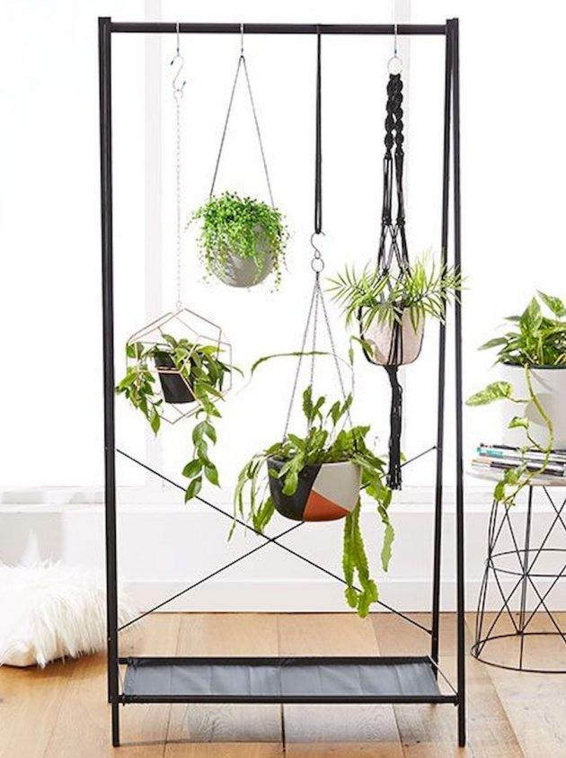 Plantes et fleurs déco intérieur
