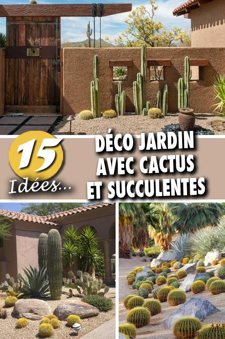 Decorer Son Jardin Avec Cactus E Succulentes 15 Idees