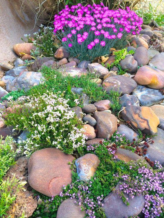 Jardin de rocaille et déco en pierre et roche naturelle