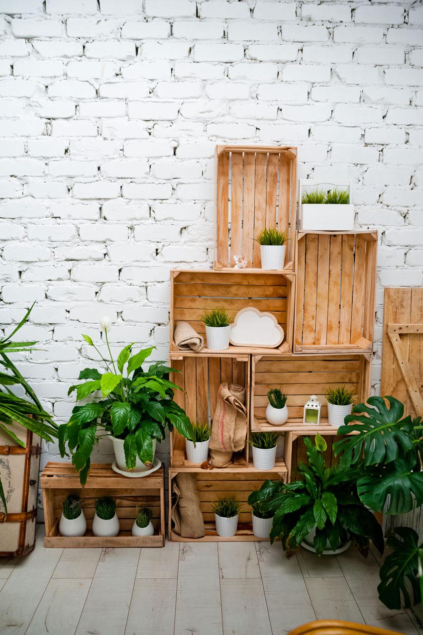 caisses en bois plantes