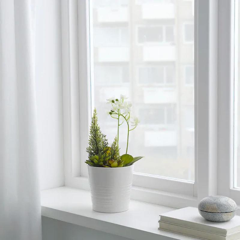 Plantes de Noël IKEA.
