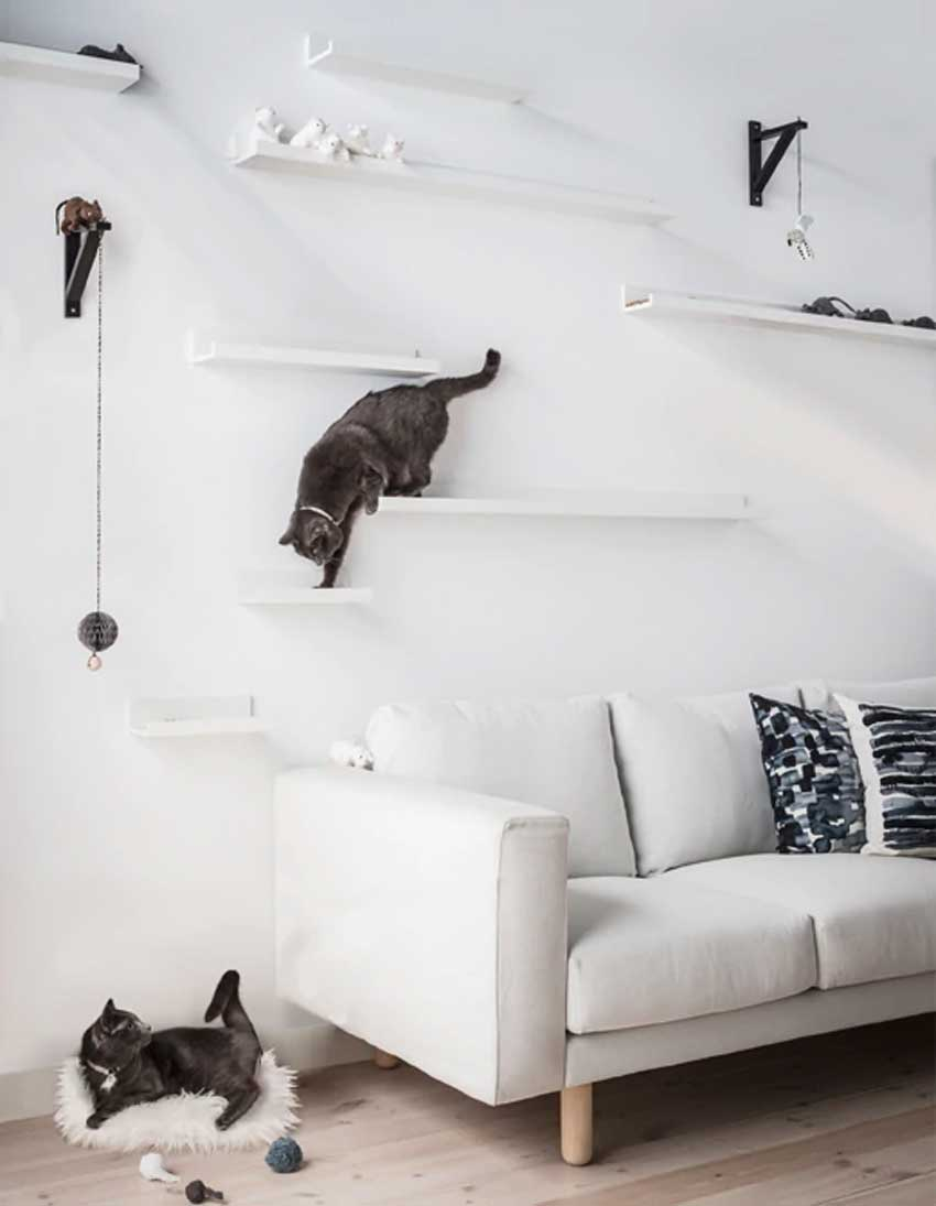 Étagères IKEA Mosslanda pour jeu pour chats.
