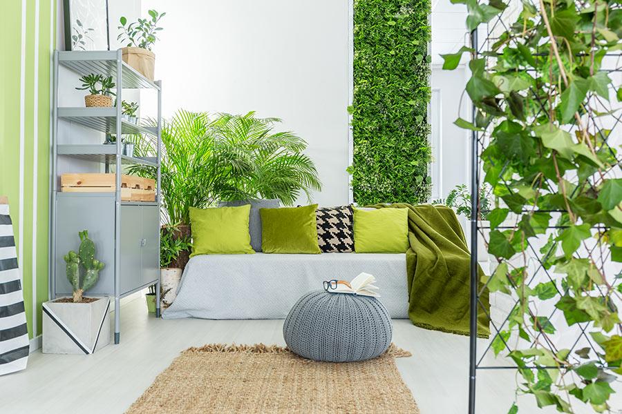 jardin vertical intérieur.