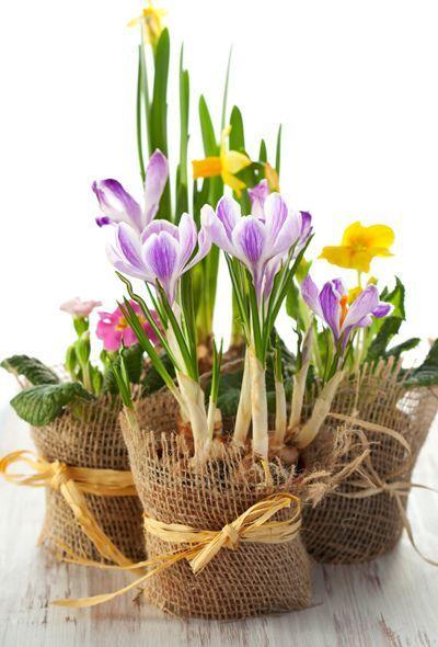 Vaso primaverile da realizzare con juta e fiori freschi.