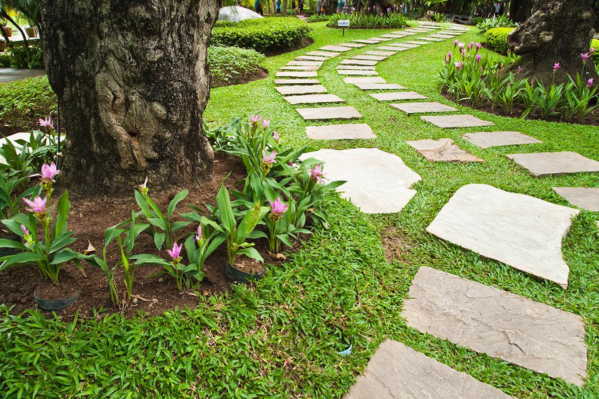 allée en pierre dans le jardin