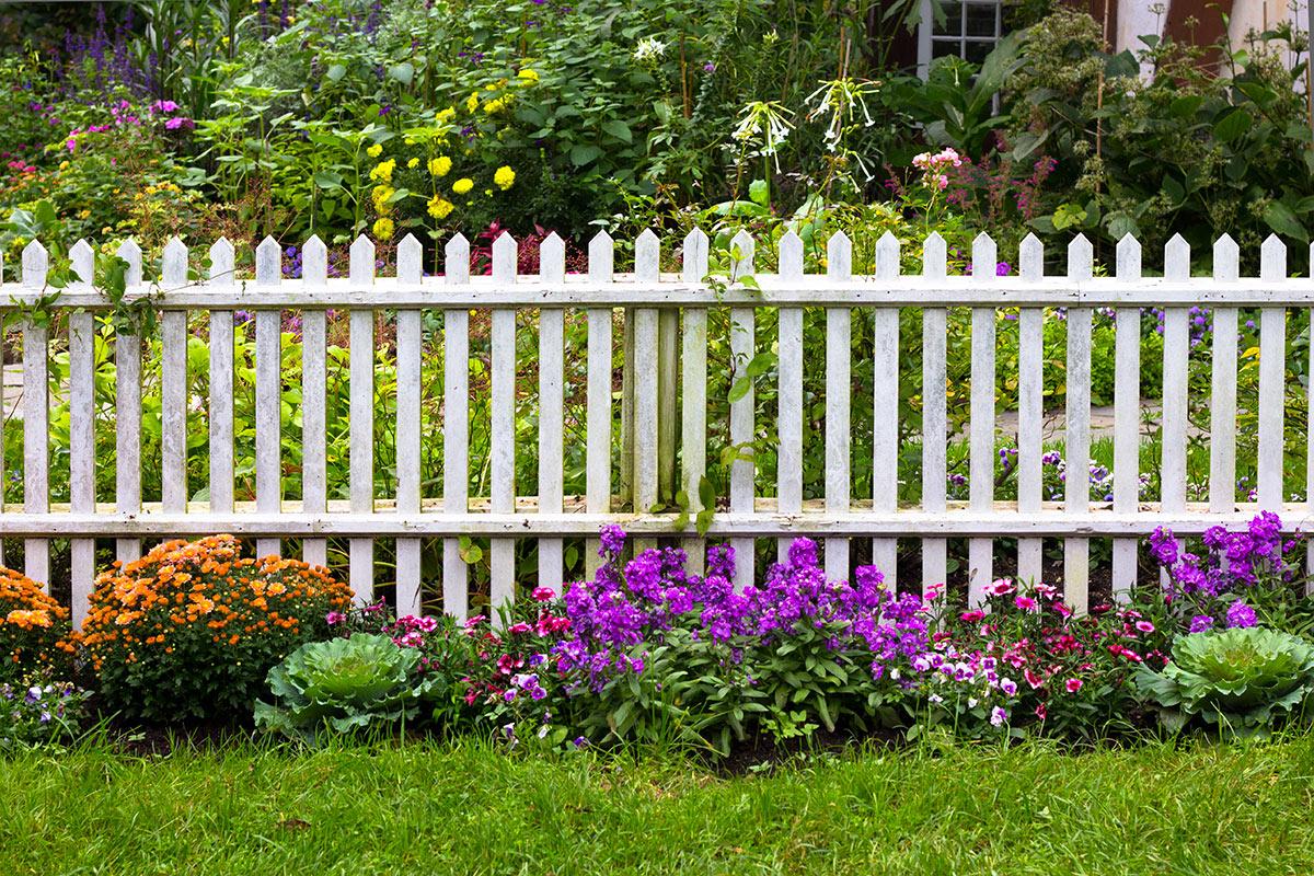clôture de jarin en bois blanc avec fleurs.