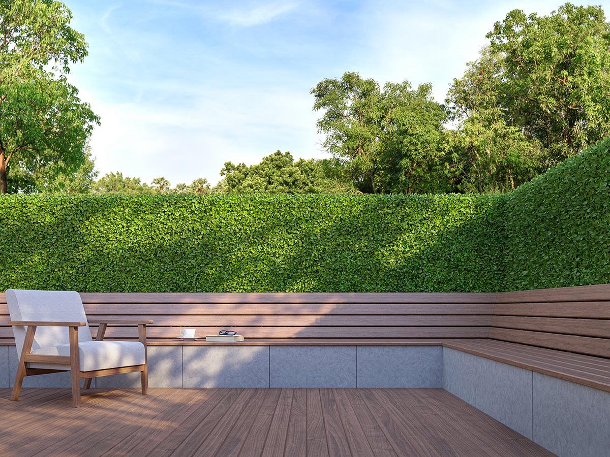 petite clôture en bois avec haie