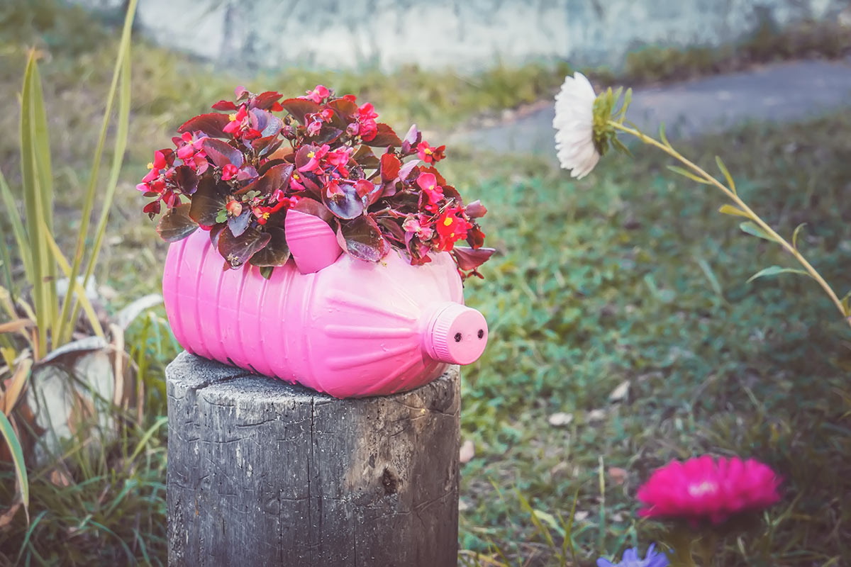 vieille bouteille en plastique rose recyclée et décorée avec fleurs