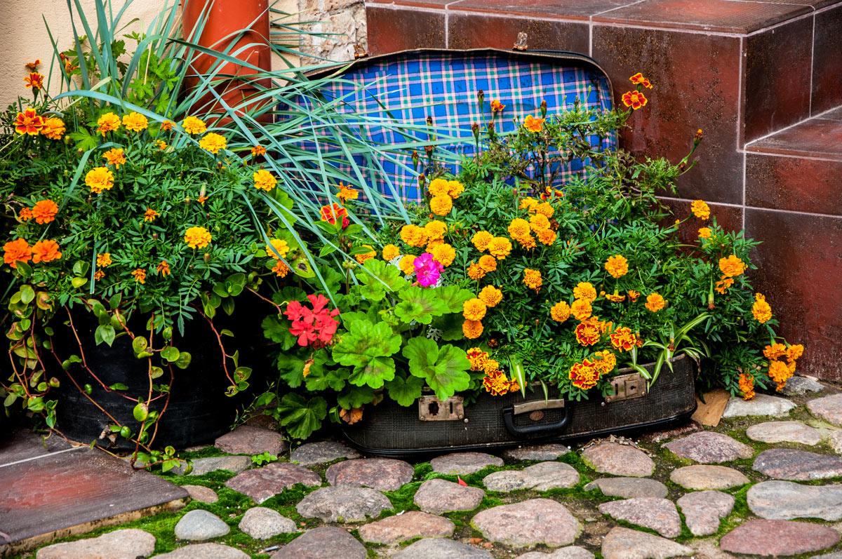 vieille valise recyclée décorée de fleurs jaunes