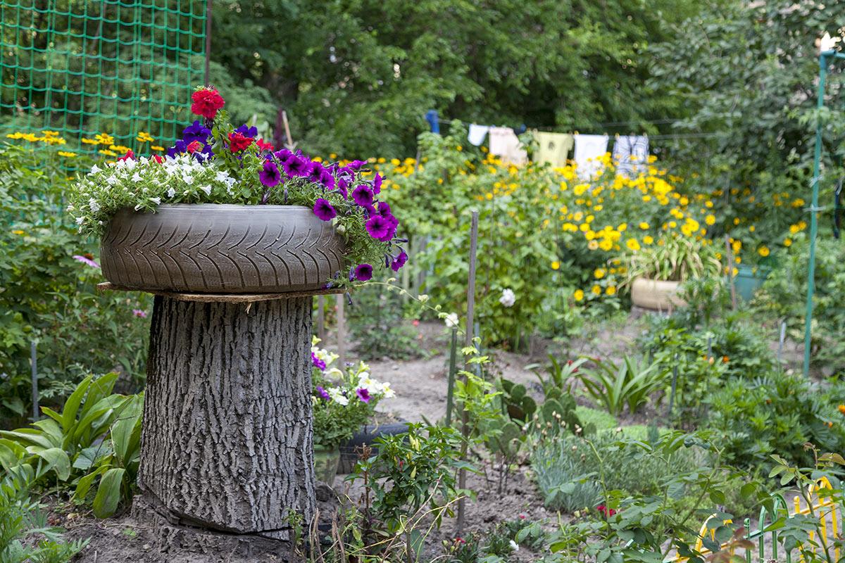 tronc d'arbre coupé avec pneu transfomé en pot de fleurs
