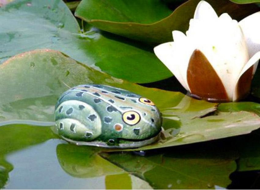 pierre peinte en grenouille