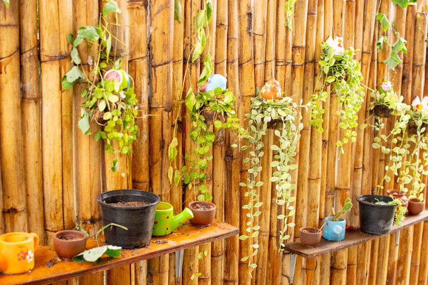 mur de bambou pour y accrocher les plantes