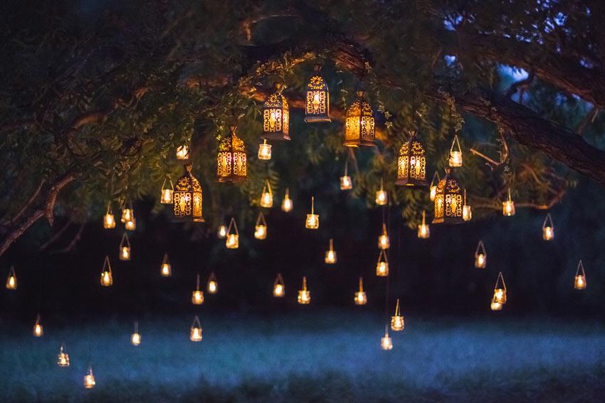 lanternes suspendues à un arbre dans le jardin