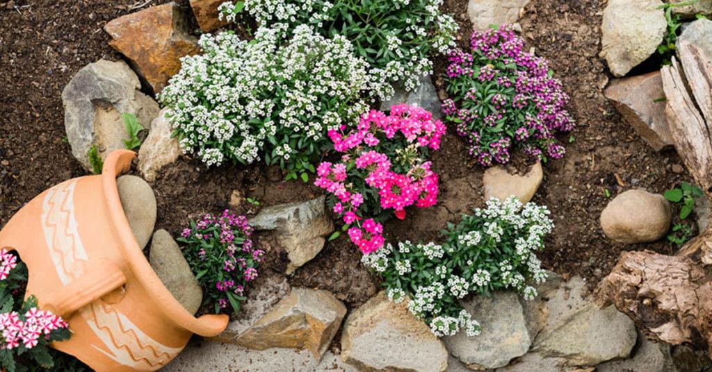 Créations originales des vases en terre cuite dans le jardin