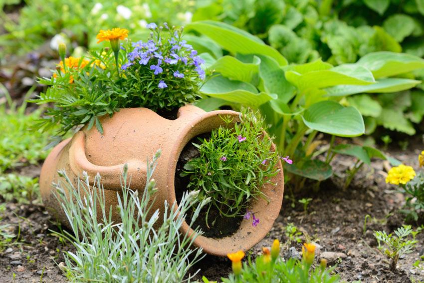 vase en terre cuite dans le jardin