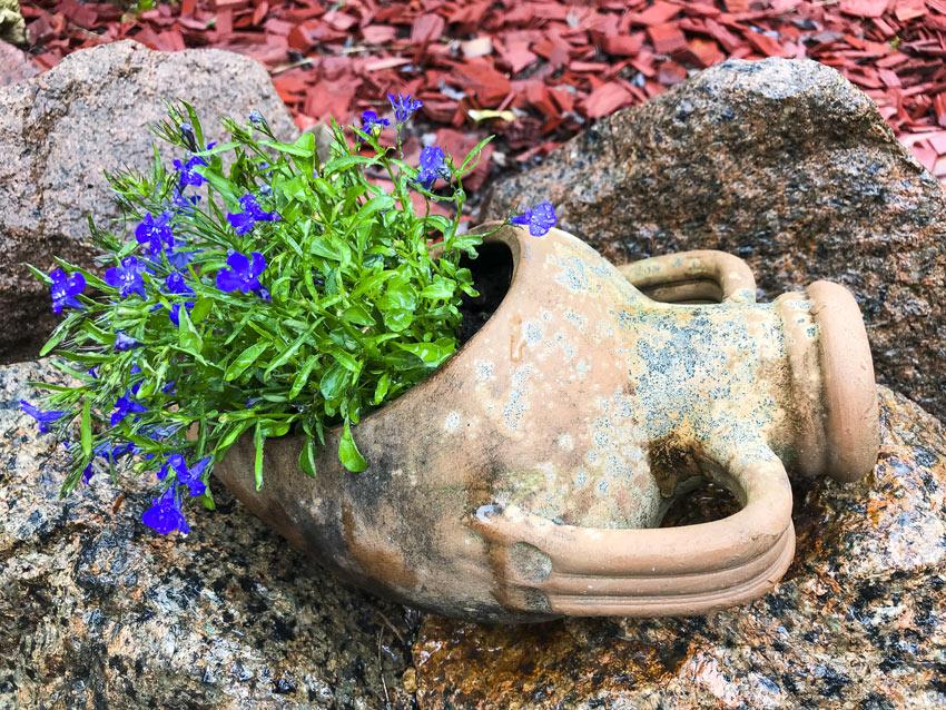vase en terre cuite avec fleurs dans le jardin