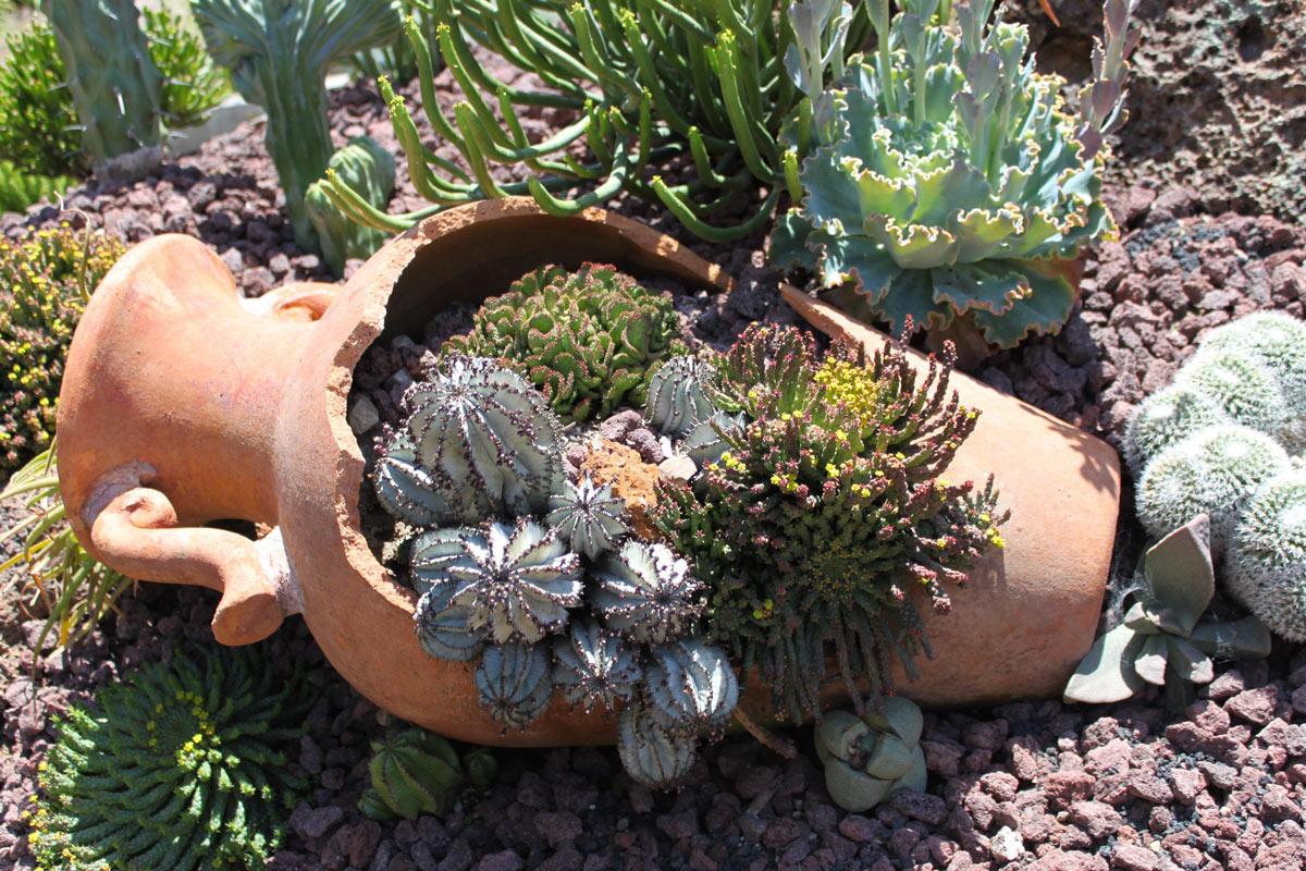 amphore ou vase en terre cuite cassé avec fleurs